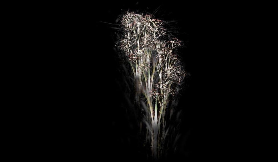 "Rohini Devasher's ""Bone Tree Series"""