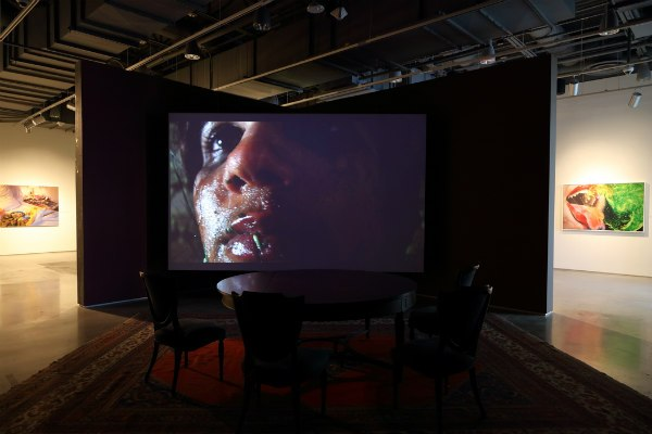 "Installation view of ""Gut Feelings"" at the Zuckerman Museum of Art, with Tejal Shah's video Feed/Kill at center."